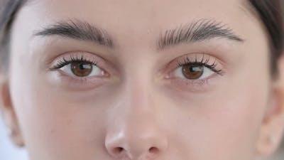 Blinking Eyes Looking at Camera