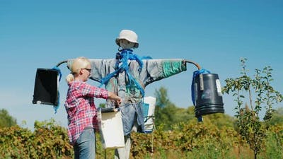 The Woman Straightens the Scarecrow
