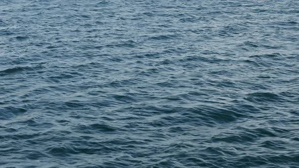 Thumbnail for Water - Pana