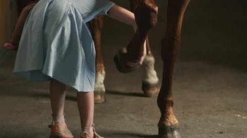 Girl Cleaning Hoof of Obedient Horse