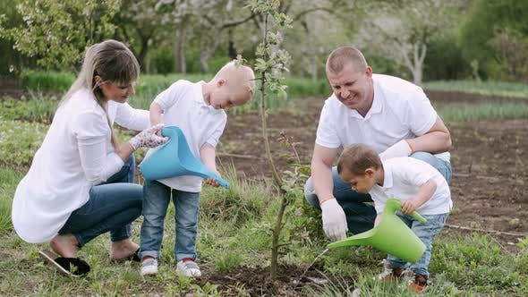 Parents and Two Little Sons Planting Tree in Village