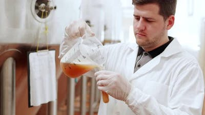 A Technologist at a Brewery Pours Beer Into a Test Tube