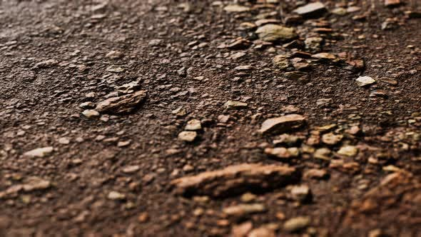 Thumbnail for Closeup of Dirty Ground Road