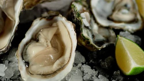 Oysters with Sliced Lime and Ice Rotate.