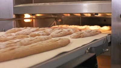 Loading Baguettes Into a Oven