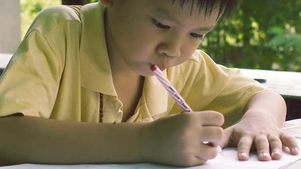 Thumbnail for Young Boy Doing Homework in the Garden 02