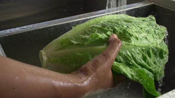 Thumbnail for Washing Lettuce Slow Motion