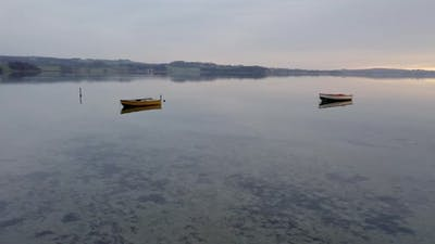 Rowboats Floating Denmark