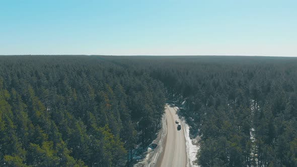 Thumbnail for Cars Drive Along Road with Snow on Roadsides in Pine Forests