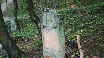 Old Cemetery with Jewish Tombstones