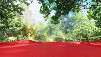 Cloth Backdrop