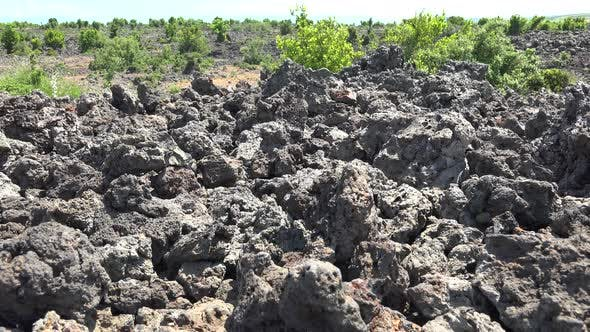 Thumbnail for Spongy Porous Broken Basalt Plain