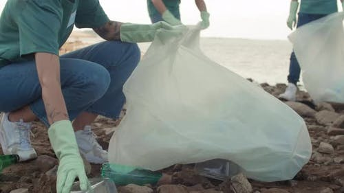 Eco Activists Cleaning Sea Coast