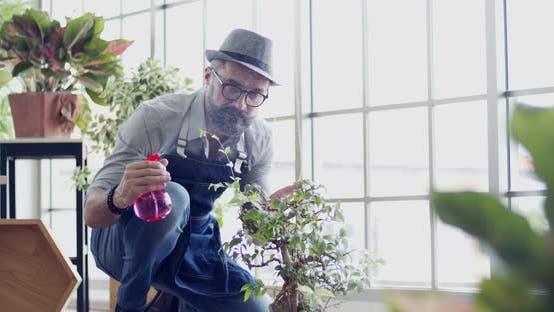 Zeitlupenmann mit Baum