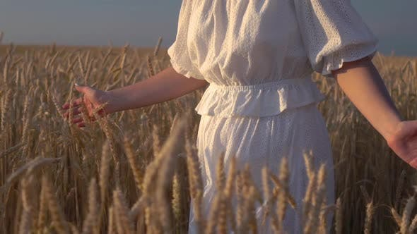 Thumbnail for Young Girl Walking in Slow Motion Through a Wheat Field