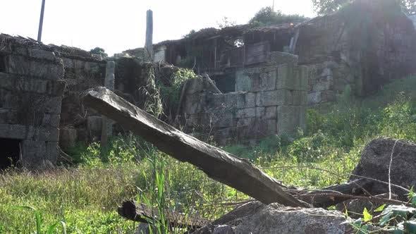 Thumbnail for Abandoned Ruins