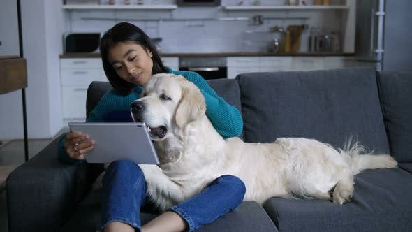 Thumbnail for Young Indian Woman Watching Laptop with Huge Dog