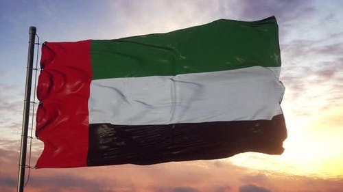 Flag of United Arab Emirates Waving in the Wind Against Deep Beautiful Sky at Sunset