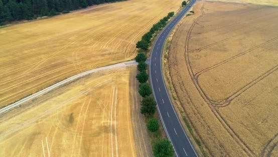 Aerial Fly Over The Road Between Agriculture Fields With Cars Moving
