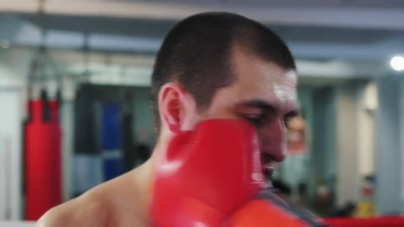 Cover Image for Box Training - a Man with Mouth Guard Getting Hit - the Guard Flies Out of Mouth