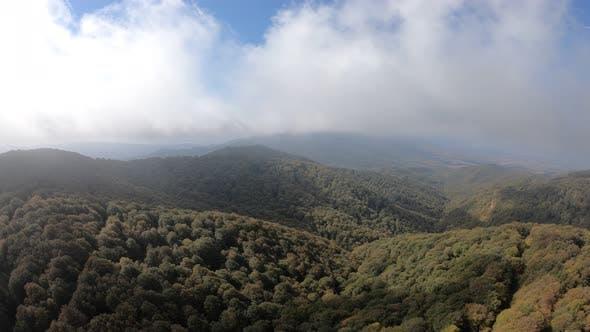 Sabaduri Mountain. Autumn forest. Georgia