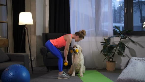 Thumbnail for Slim Female Doing Sport Exercise with Dog Trainer