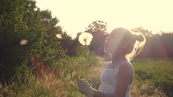 Cover Image for Child Girl Playing With The Dandelion Flower