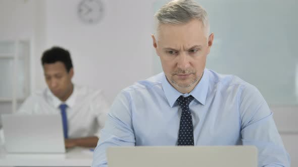 Cover Image for Grey Hair Businessman Working on Laptop in Office