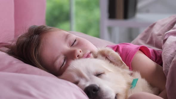 Thumbnail for Portrait of Little Girl Sleeping with Puppy in Bed