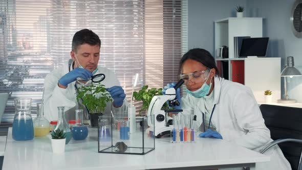 In a Chemical Research Laboratory Mixed Race Scientists Witnessing the Discovery After Provided