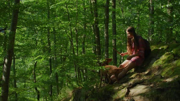 Thumbnail for Girl and dog relaxing in a forest