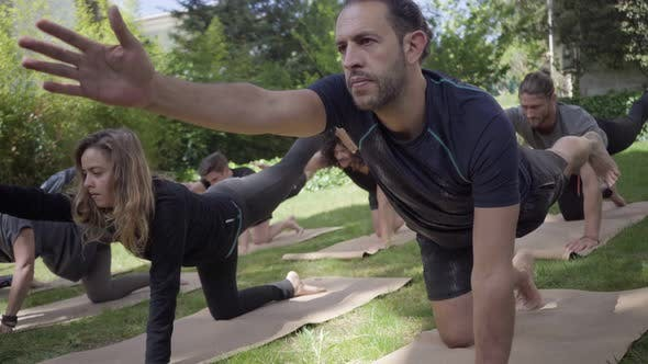 Thumbnail for Concentrated People Performing Yoga Poses Outdoor