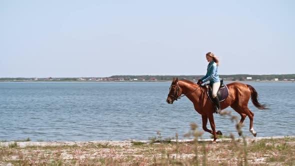 Thumbnail for Riding Horse on Lakeshore
