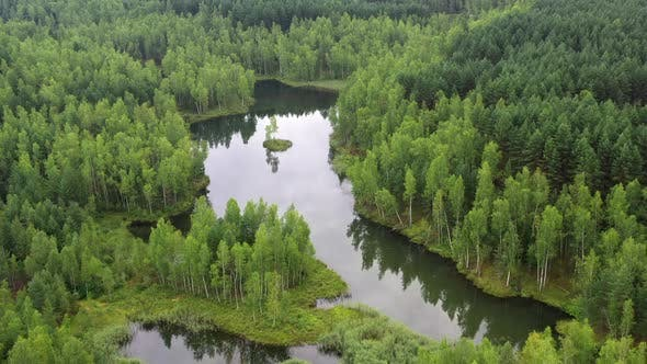 Aerial view of a forest lake with small island.