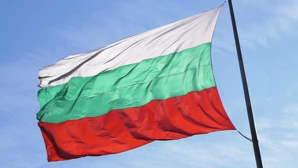 Bulgarian Flag Moving. Symbol of Patriotism.