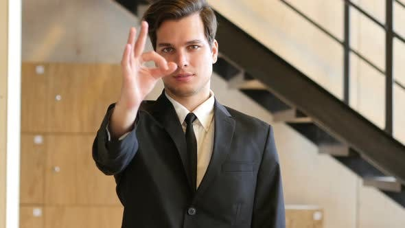 Thumbnail for Everything is Ok, Okay, Gesture by Businessman in Office