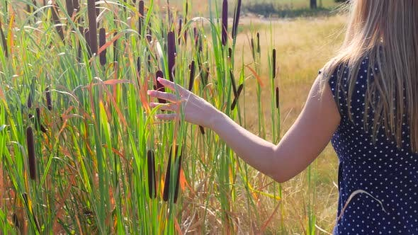Thumbnail for Female Walking Beside Tall Grass And Touching With Her Hand Bulrush2