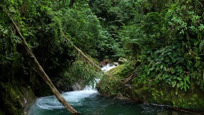 A tropical stream with a beautiful cascade in a tropical forest