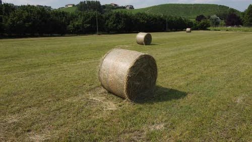 Hay Bale in Agricultural Farming