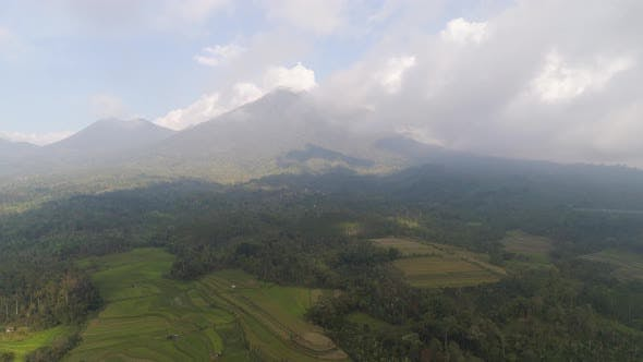 Thumbnail for Farmlands and Village Bali, Indonesia