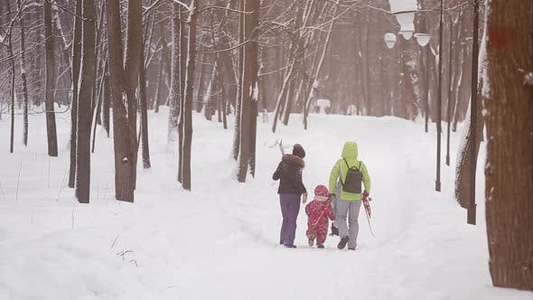 Thumbnail for Family Walks in the Winter Garden, Snow Day