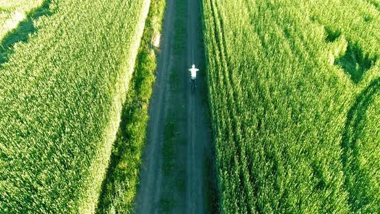 Thumbnail for Aerial View on Young Boy, That Rides a Bicycle Thru a Wheat Grass Field on the Old Rural Road