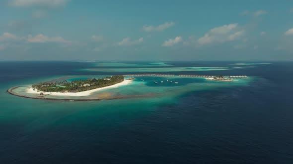 Thumbnail for Paradise in Ocean