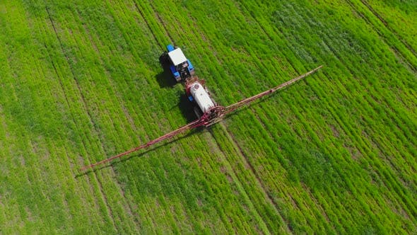 Tractor Is Spraying Pesticides on Grain Field
