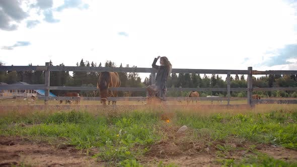 Thumbnail for Trendy Lady Resting Near Horse Enclosure on Ranch
