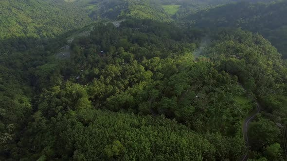 Thumbnail for Aerial view of a road going between dense forest, Bali island, Indonesia.