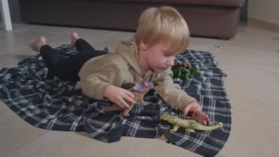 Little Boy Playing with Toy Dinosaurs on Floor