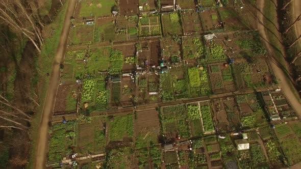 Thumbnail for Landwirtschaft