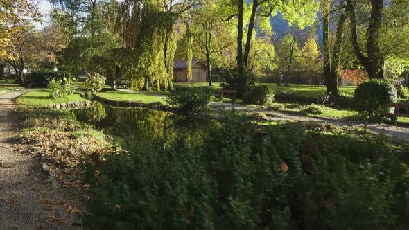 Thumbnail for Walking At The Sunny Autumn Park 4