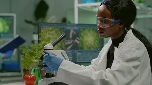 Biotechnology Scientist Examining Botany Green Leaf